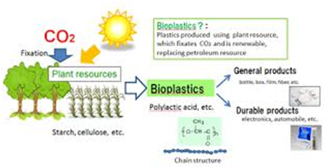 Is bioplastic a solution to plastic pollution? – Project UPSC